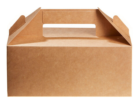Carry Pack M 22 x 9,5 x 12 cm